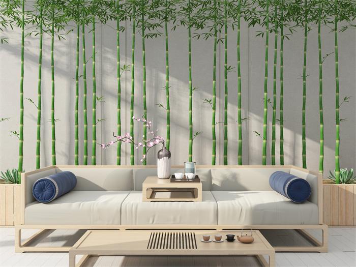 室内养竹子风水好吗?室内养竹子的方法有哪些?